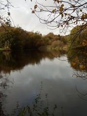 Photo of Birnie Loch Nature Reserve