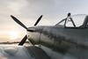 Spitfire141020-75.jpg