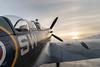 Spitfire141020-83.jpg