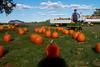 Shadow Pumpkin Man