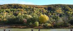 Autumn in Kosice, Slovakia