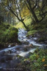 Photo of Galligill Burn - Cumbria