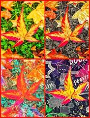 POOFFF! Leaves fall