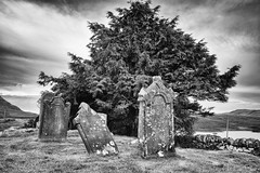 """CB - Cimetière Ecosse- • <a style=""""font-size:0.8em;"""" href=""""http://www.flickr.com/photos/161151931@N05/50555220551/"""" target=""""_blank"""">View on Flickr</a>"""