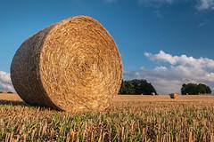 "Gareth's Photo of the Week 37 ""Straw Bales"""