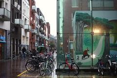Raaks, Haarlem