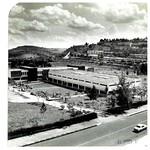 BIBLIOTECA CENTRAL - FOTOS DIVERSAS29-10-2020-095121-1