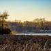 Battle Creek Lake - Woodbury - Minnesota