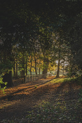 Photo of Sunrise: Acton Park
