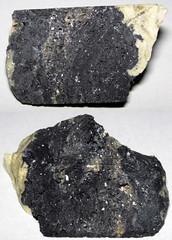 Impactite (Pleistocene; Zhamanshin Impact Crater, Kazakhstan)