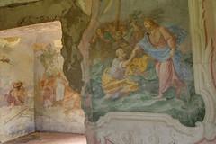 Villa Medicea VIII