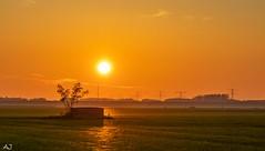 Sunset reflections - Spiderwebs