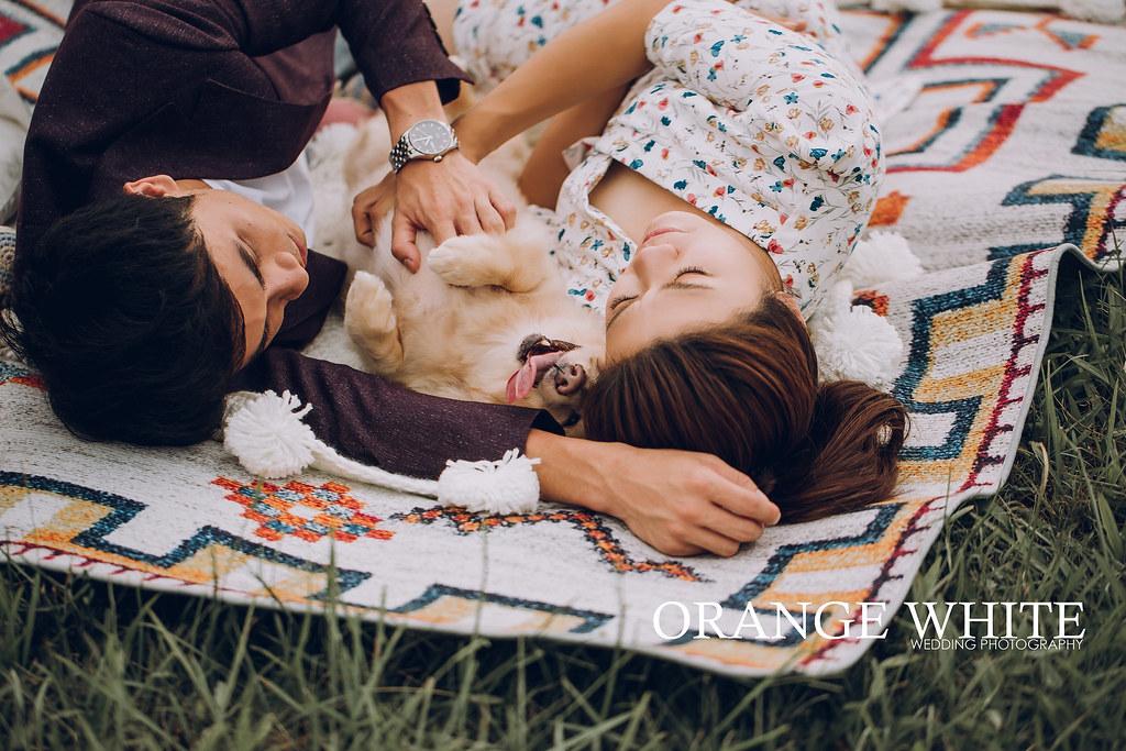 寵物寫真,寵物婚紗,野餐,我與毛孩的全家福,全家福寫真,臘腸,情侶,橘子白,攝影,工作室,便宜,推薦