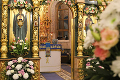 (13) Всех скорбящих Радость 05.11.2020