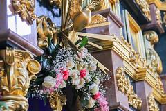 (93) Всех скорбящих Радость 06.11.2020