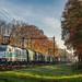 Deventer Colmschate Lineas 186 258 Silesia Xpress 48554