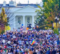 2020.11.07 Celebrating, Washington, DC USA 312 150281