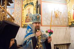 (16) Всех скорбящих Радость 05.11.2020