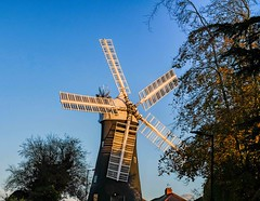 Holgate Windmill, October 2020 - 06
