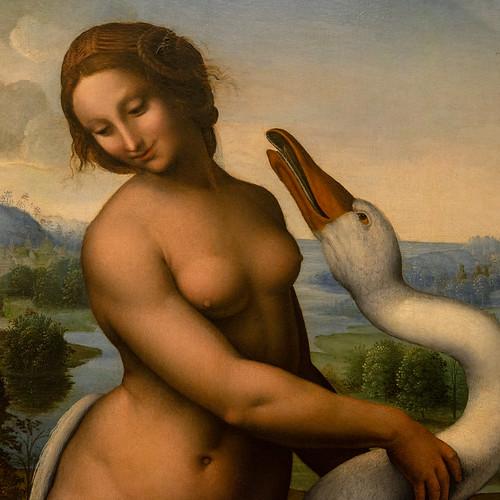 Léda et le cygne, Cesare da Sesto