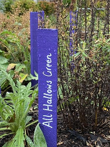 Physic Garden, Holyrood