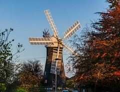 Holgate Windmill, October 2020 - 05