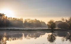 Early morning at Natuurpark Lelystad