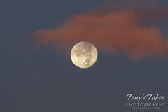 November 1, 2020 - Sunrise moon. (Tony's Takes)