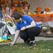 CCMA, MAC Celebrate Dia de los Muertos with Drive-By Ofrendas and Food Drive 1