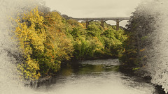 Photo of Autumn in Wales