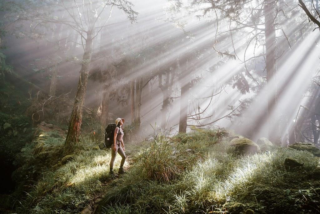 圖1_平日在都市叢林累積的疲憊與倦容,於山林與芬多精之中獲得舒壓,快來場舒活之旅