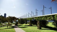 Viaduct with vertical garden