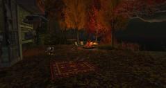 Autumn's Final Blaze
