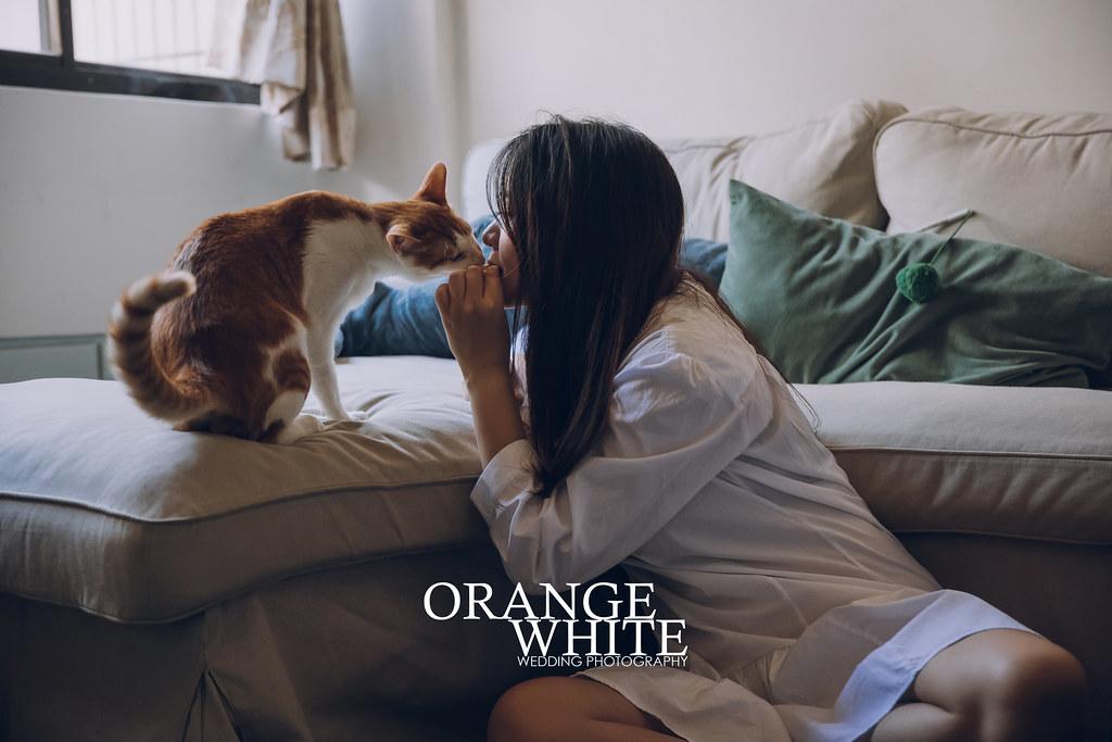 造型,Anita俐婷,婚攝,橘子白,攝影,寵物婚紗,寵物寫真,貓,喵星人,婚紗攝影,自主婚紗,自助婚紗,輕婚紗,便宜,帶貓拍婚紗,家裡拍婚紗,板橋,台北,雙北,工作室