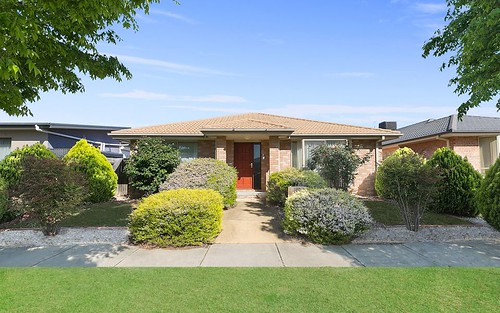 16 Judith Wright Street, Franklin ACT 2913