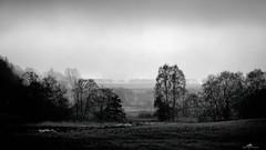 2020-11-13 12.08.18 - Mist land, Et eller andet, 318-366, Uge 46,  Stånum, Munkdrup, Randers - _B133882 - ©Anders Gisle Larsson