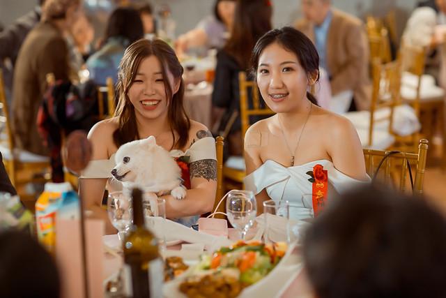 台中婚攝-0182