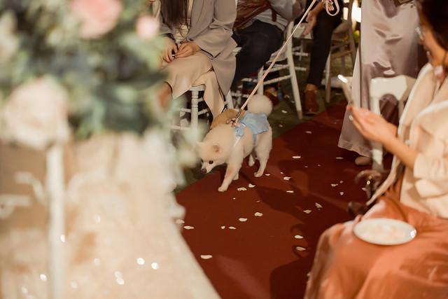 台中婚攝-0157