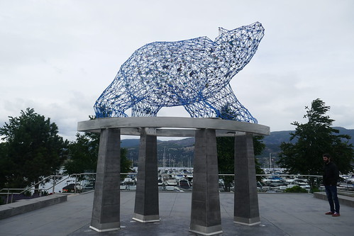 Kelowna - The bear