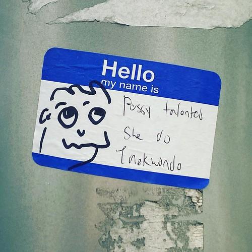 Hello my name is Pussy talented She do Taekwondo #sticker #streetart #philly