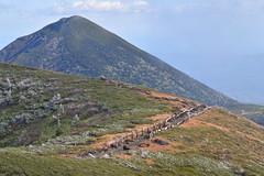 Hakkoda trail