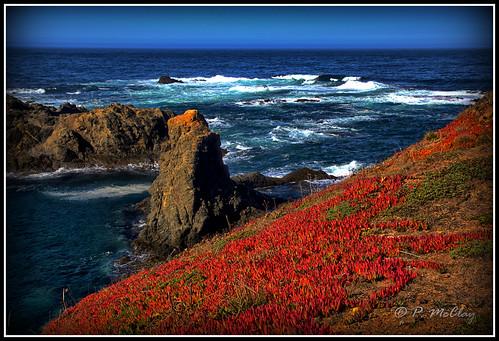 Point Cabrillo California Coast