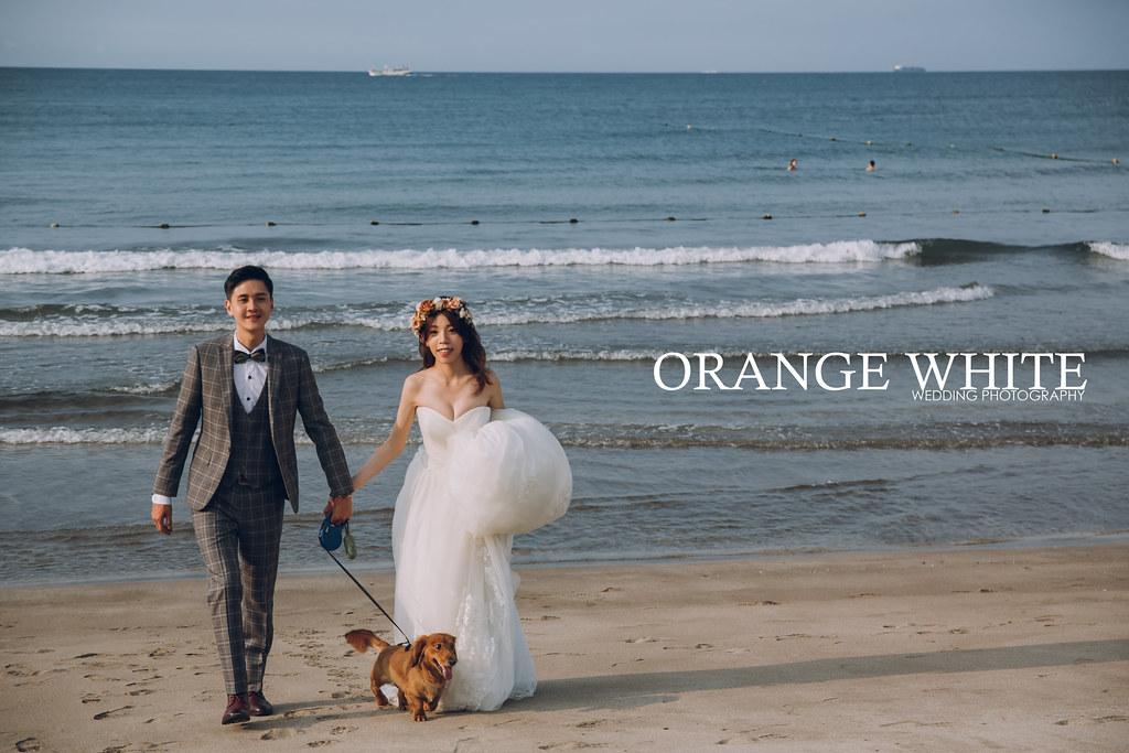 Anita俐婷,Fantasia Wedding Dress,寵物寫真,寵物婚紗,婚紗攝影,婚攝,自主婚紗,自助婚紗,臘腸,神秘海岸,白沙灣,橘子白,攝影,工作室,便宜,優質推薦