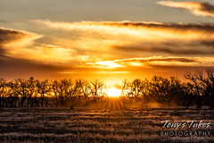 November 14, 2020 - A beautiful Great Plains sunrise. (Tony's Takes)