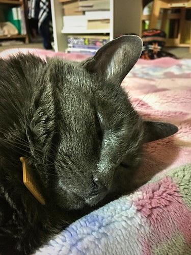 Sleeping On The Floor image