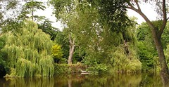 Photo of River Severn, Shrewsbury *