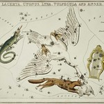 Sidney Hall's (1831) astronomical chart illustration of the Lacerta, Cygnus, Lyra, Vulpecula and the Anser. Original from Library of Congress. Digitally enhanced by rawpixel. thumbnail