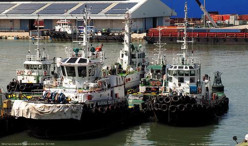 marina tugs@piet sinke 16-11-2020