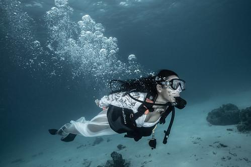 Bonnie Diving