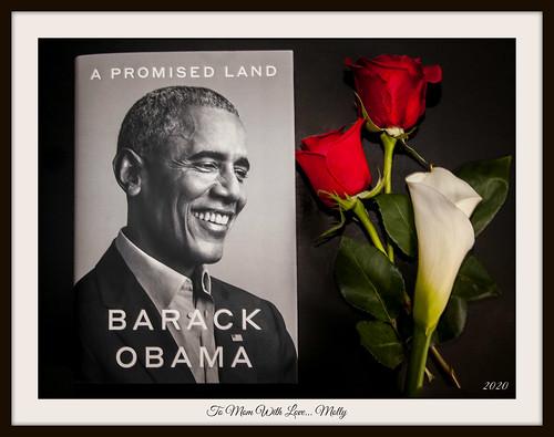 Barack Obama book fan photo